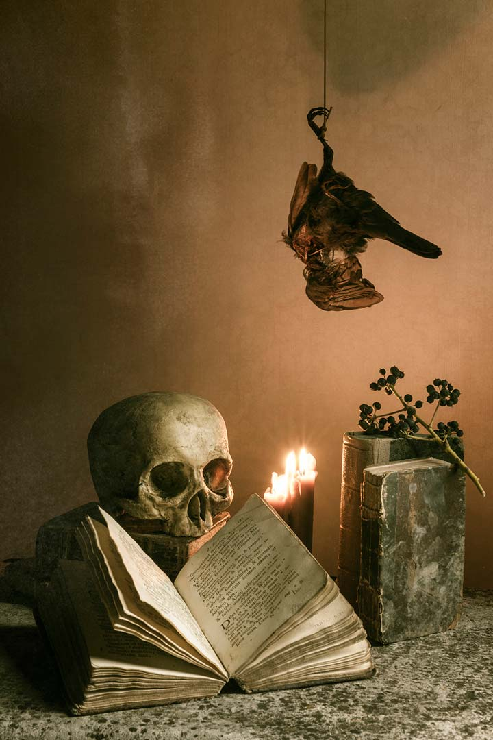 Skull Books Dead Bird Candles Tristan Dark Vanitas DSC 6422