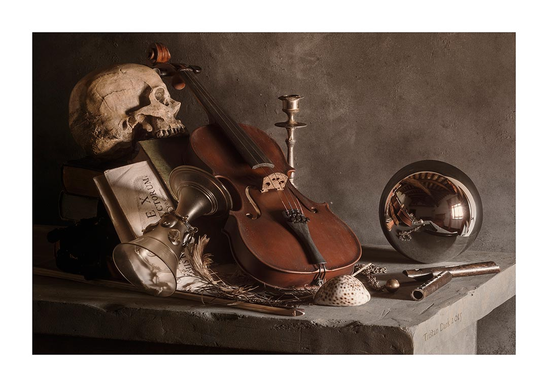 Still Life With Violin Skull And Spherical Mirror